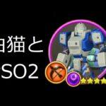 #白猫プロジェクト と #PSO2NGS【ship4】#pso2es