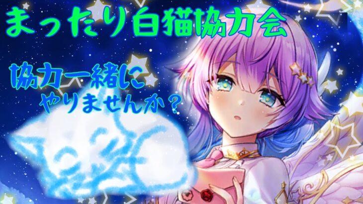 """【白猫】まったり白猫""""縛り協力""""会( ̄▽ ̄)"""